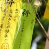 平塚七夕祭り 子ども連れで見どころと駐車場は?