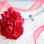 母の日のプレゼント 60代の義母には花以外だと何がいい?