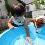 水遊びで0歳1歳2歳の注意点やおもちゃ、水遊びパンツは?