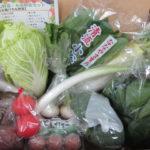 九州の野菜通販で安いのは?ヤフーショッピングでお得に!
